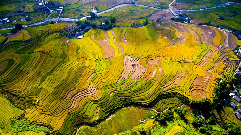 Rice paddies in Mù Cang Chải, Vietnam.