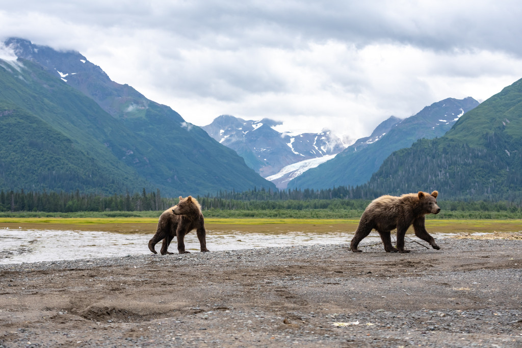 Lake Clark National Park and Preserve, Port Alsworth