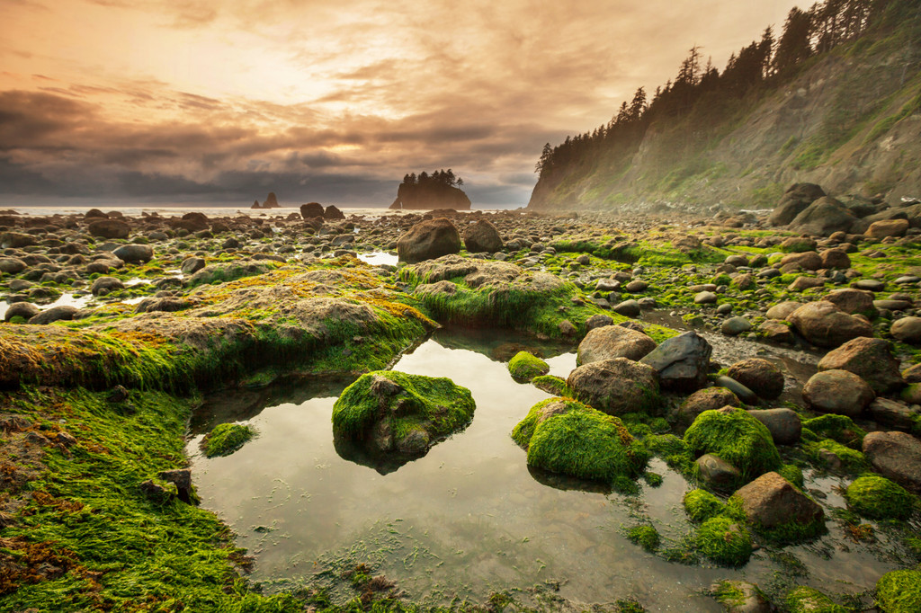 Olympic National Park, Port Angeles
