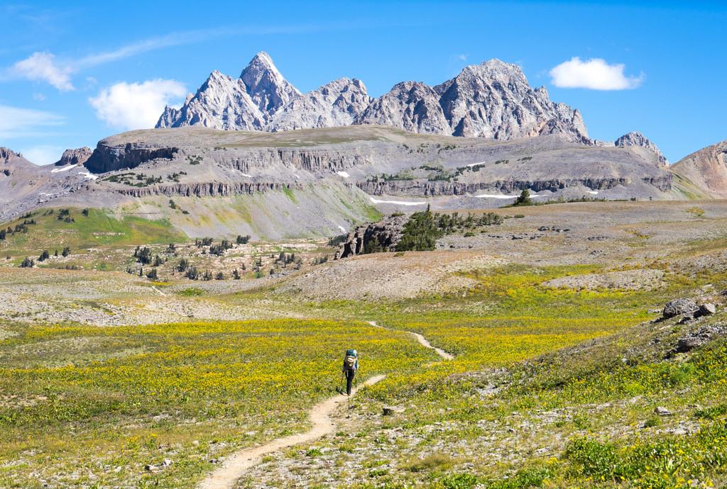 Teton Crest Trail, Alta