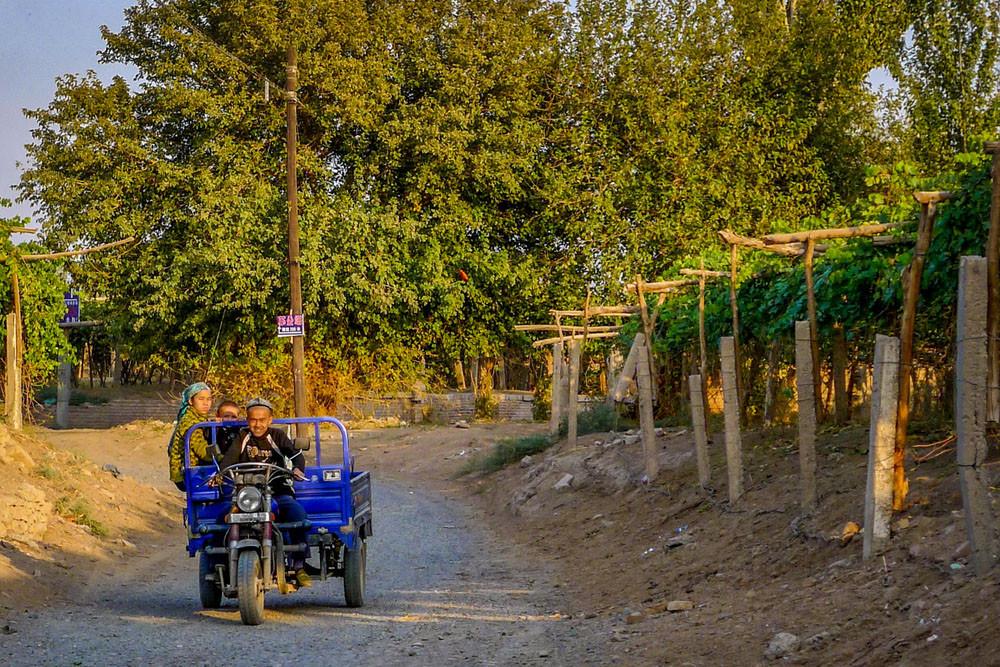 Motorcycle vineyard tour, Turpan, China. Kylie Nicholson/Shutterstock.com