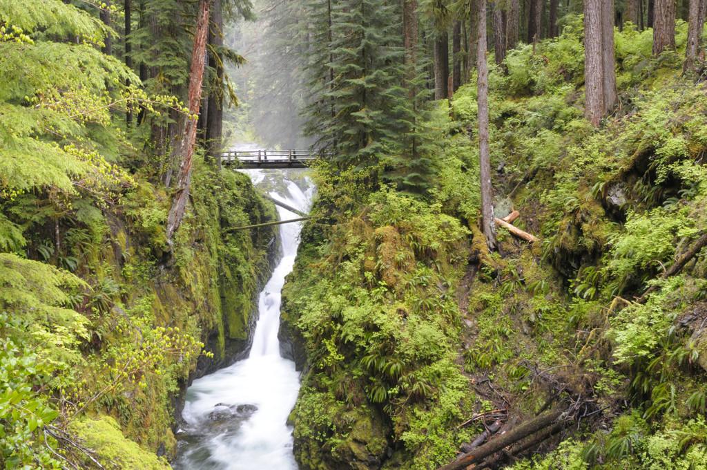 Sol Duc Falls, Washington