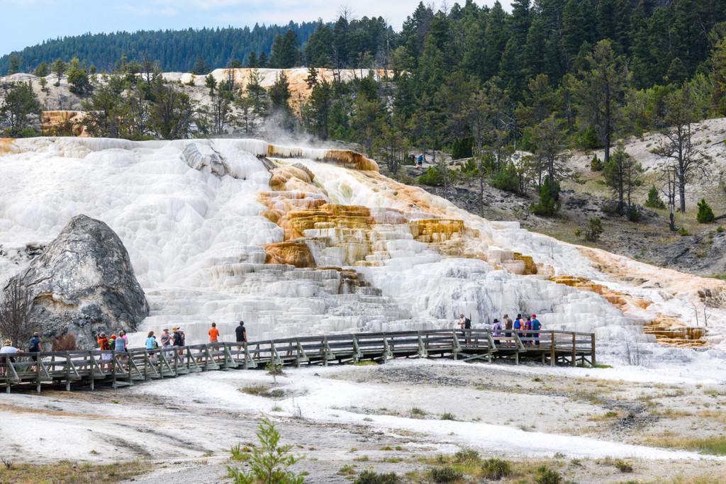 Mammoth, Yellowstone National Park