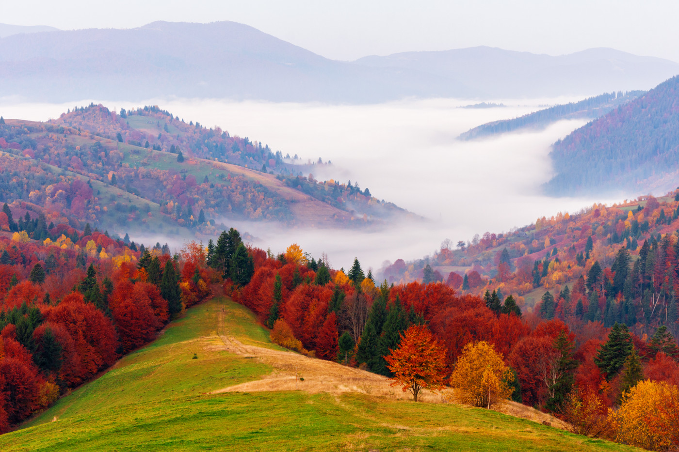 Carpathian National Nature Park, Yaremcha