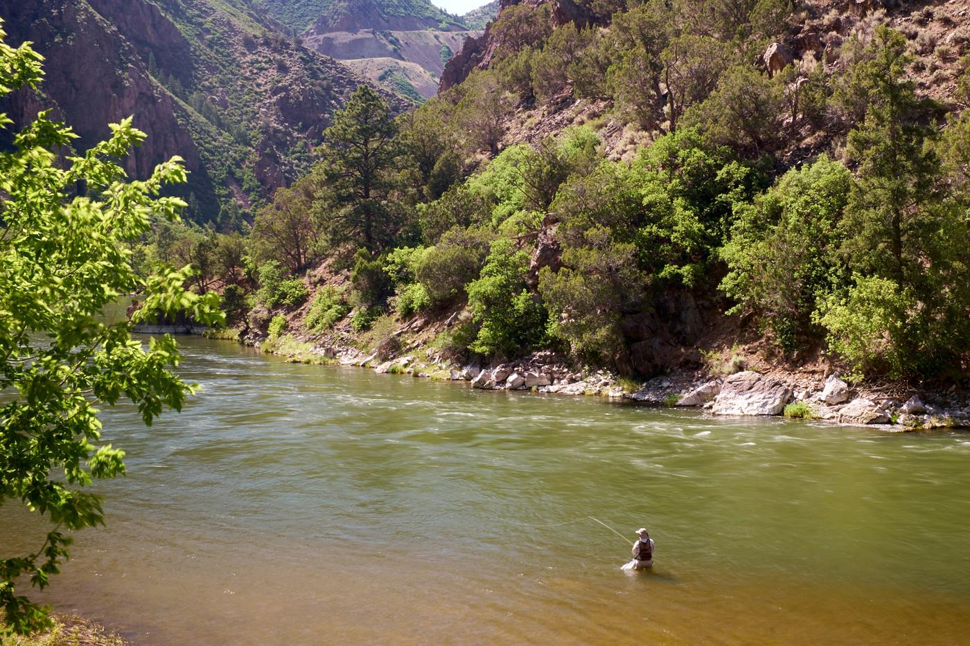 Gunnison River, Gunnison River