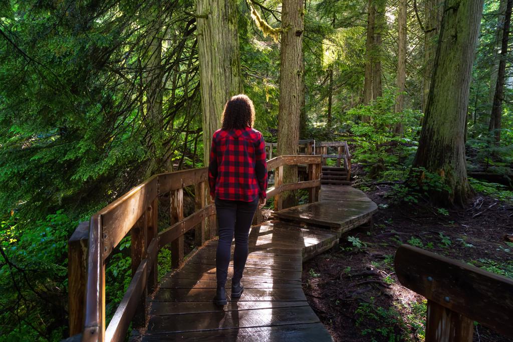 Trail of the Cedars Nature Trail, West Glacier