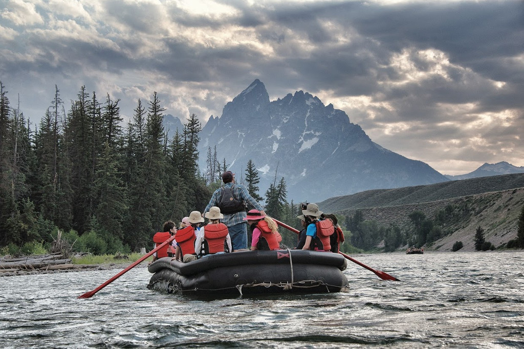 Triangle X Ranch - National Park Float Trips, Moose