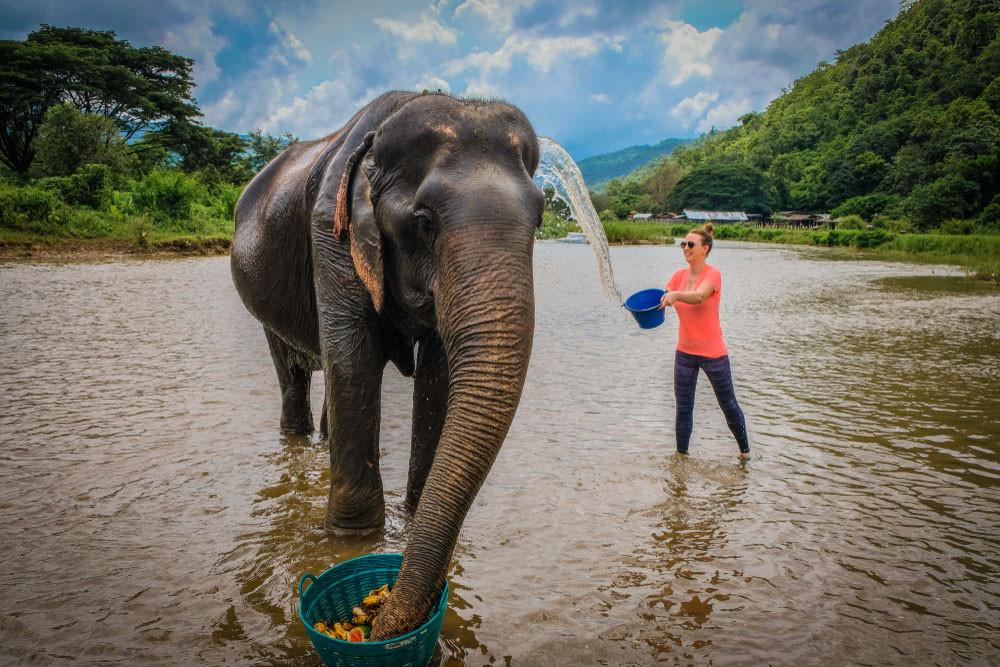 Elephant Nature Park, Chiang Mai, Thailand.
