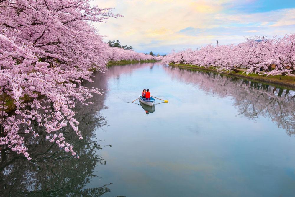 Hirosaki Castle Park, Japan. cowardlion/Shutterstock.com