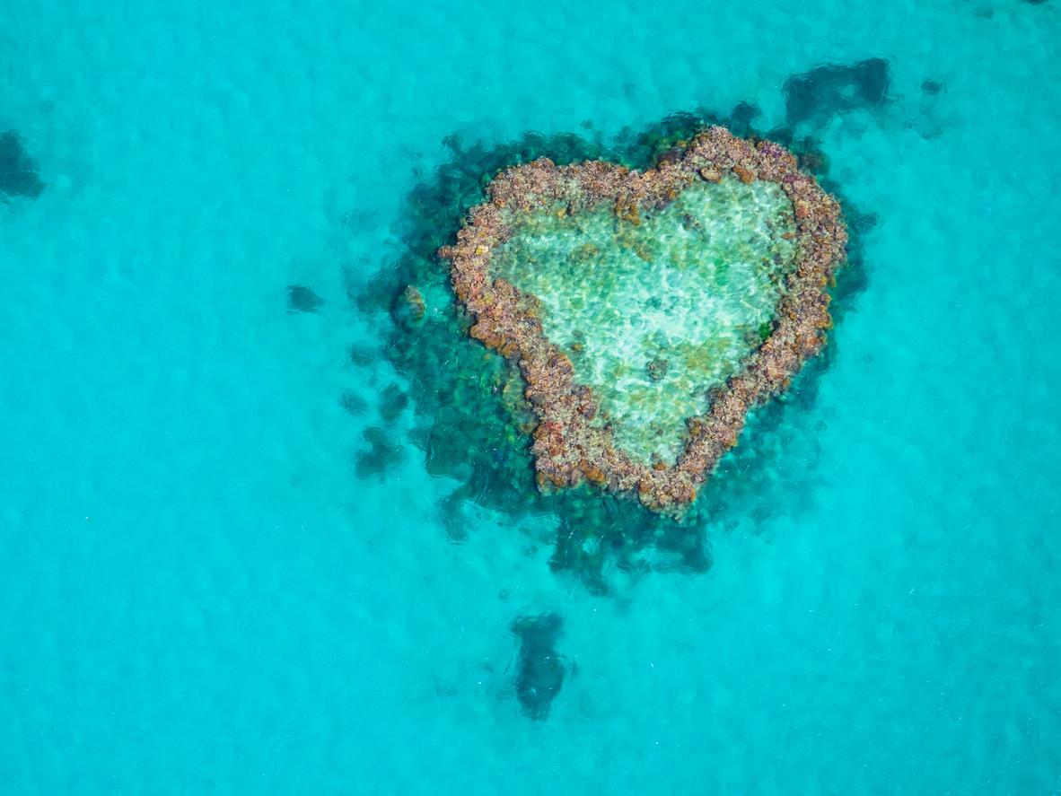 Heart Reef, Hardy Reef, Great Barrier Reef, Australia.