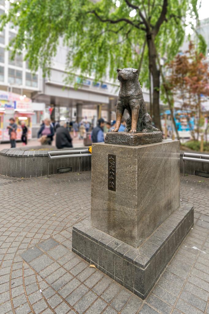 Hachikō Memorial Statue, Shibuya City
