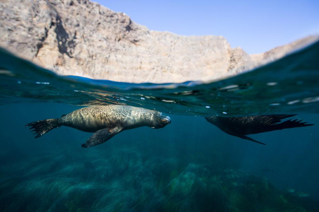 Channel Islands National Park, Ventura