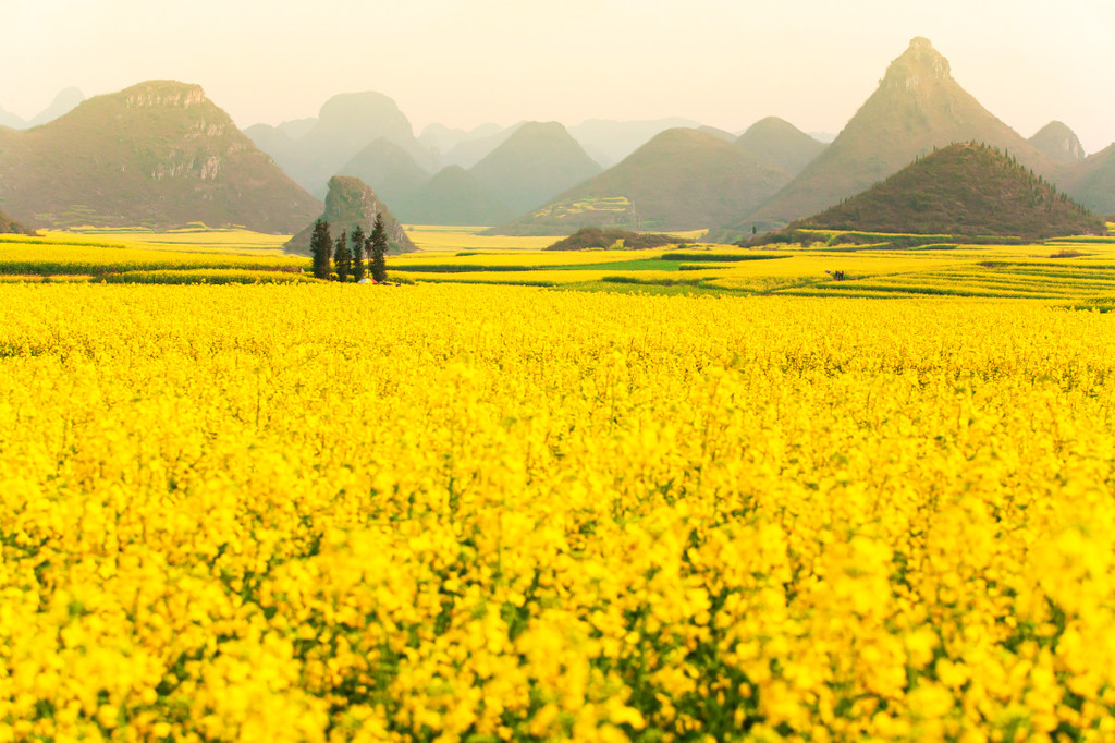 Luoping County, Qujing