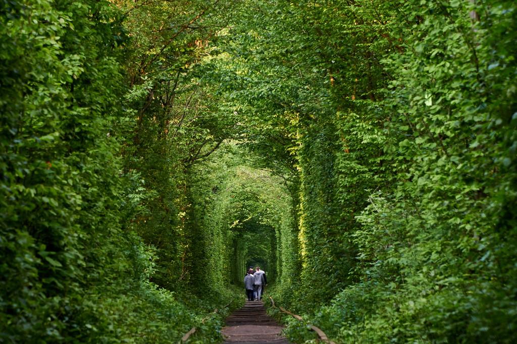 Tunnel of Love, Klevan'