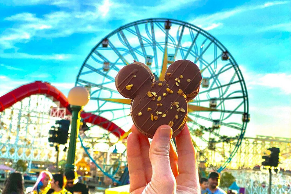 Disneyland California Adventure, California, CA. Credit: @daliaelisneybydavid