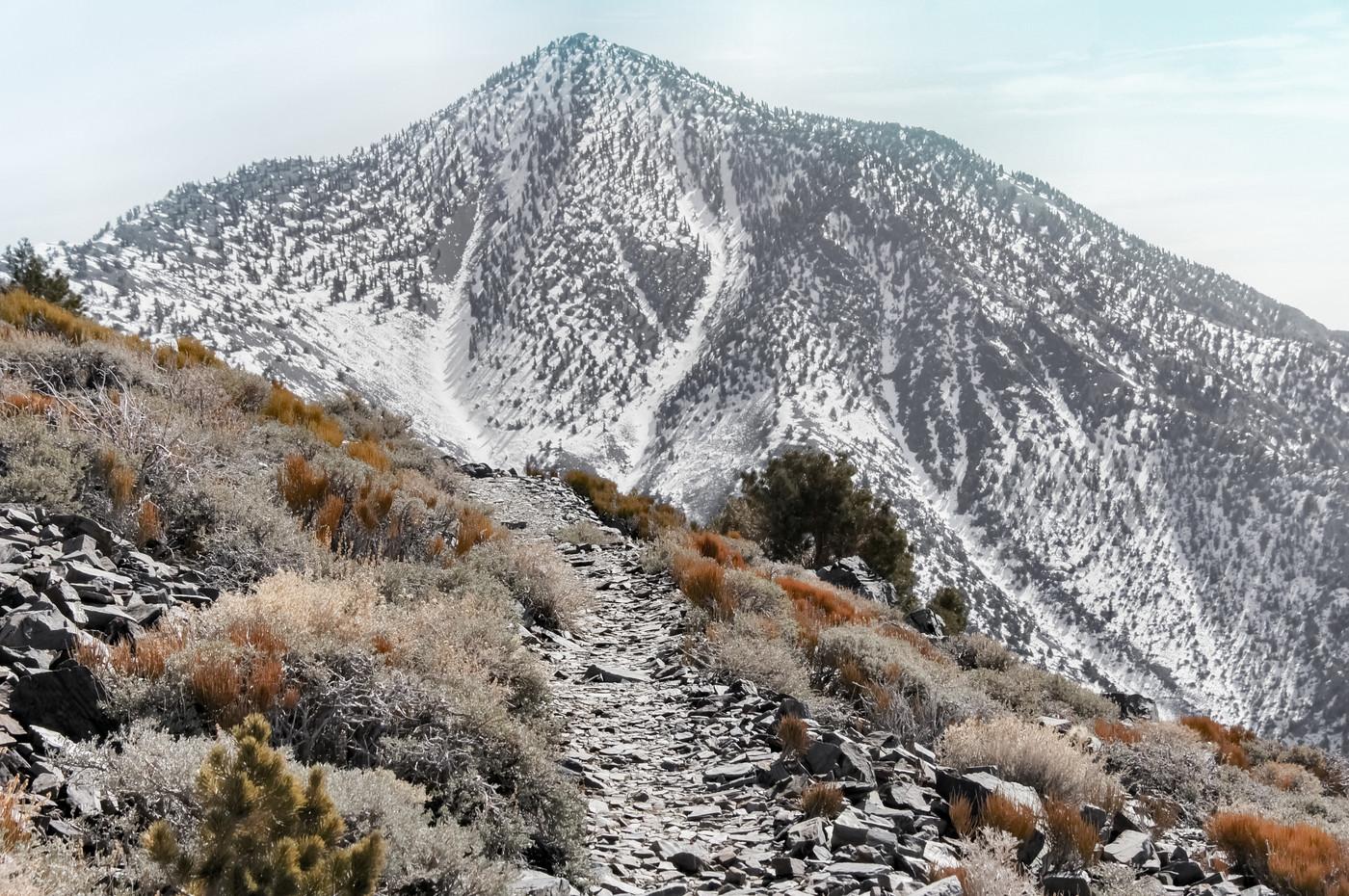Telescope Peak, Peak