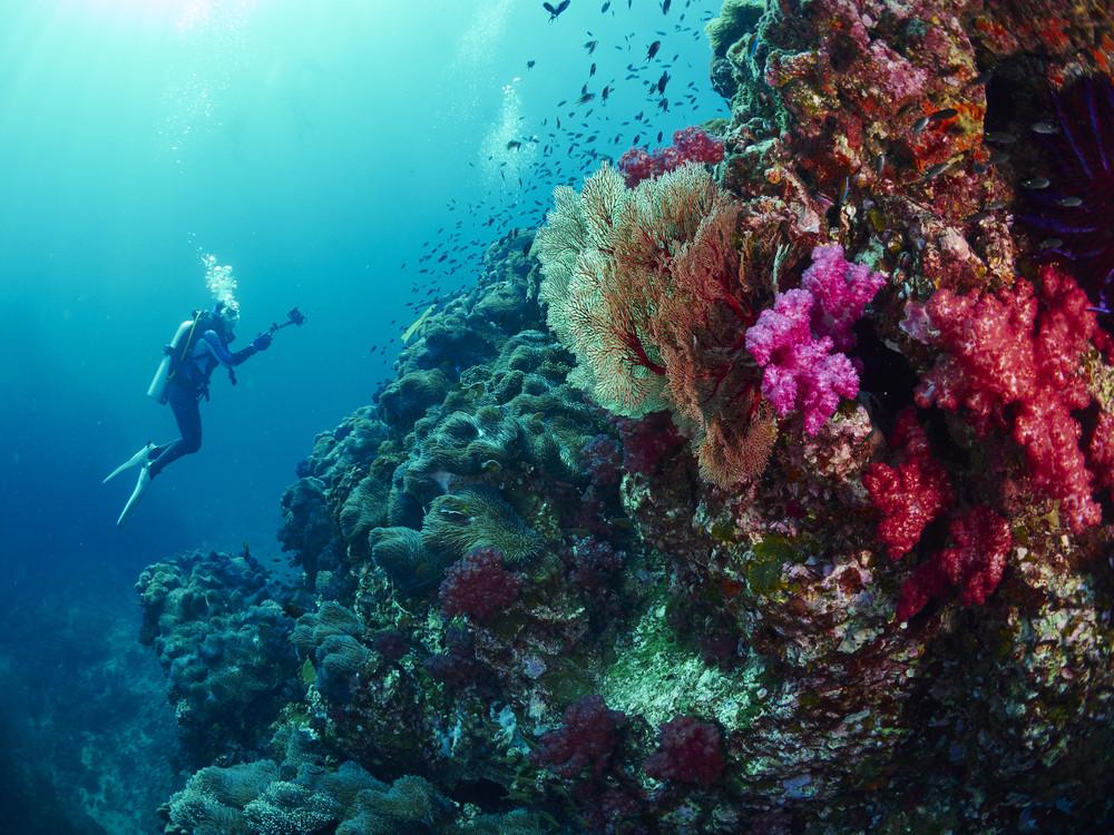 Diver in Thailand.