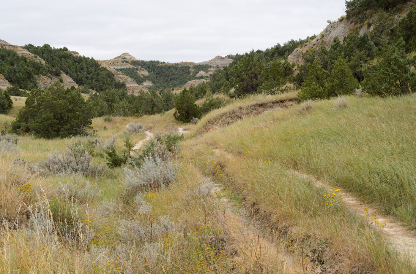 Caprock Coulee Trail, Grassy Butte