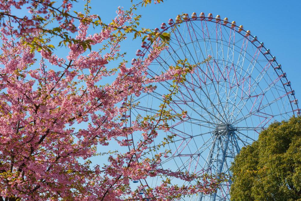 Ferriswheel at Kasai Rinkai Koen, Tokyo, Japan.