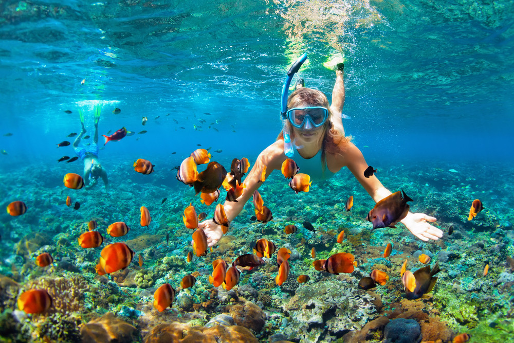 The best snorkeling in Thailand.