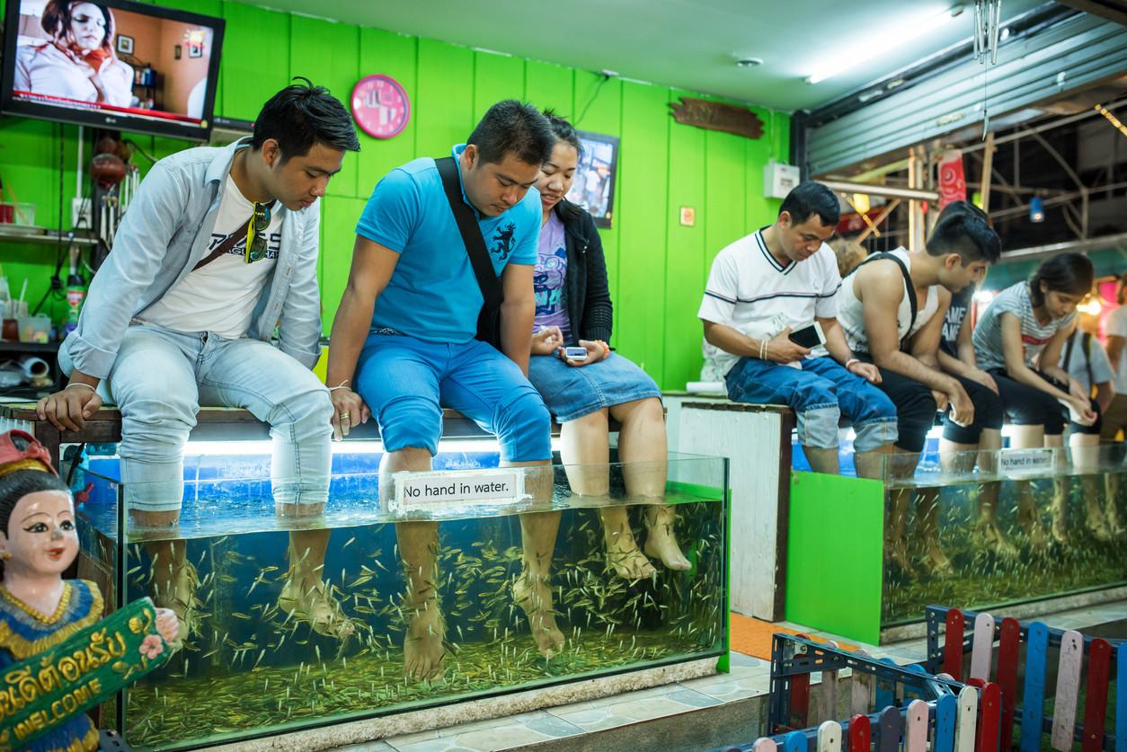 Fish pedicure, Chiang Mai, Thailand. istockphoto/taikrixel