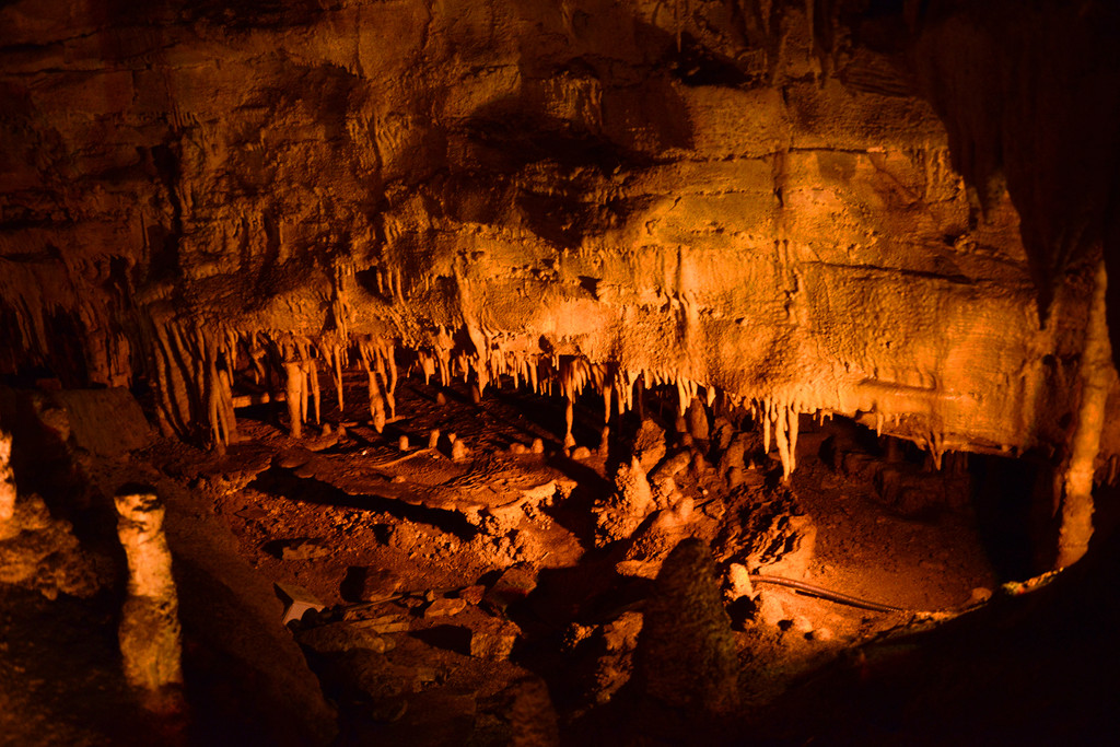 Mammoth Cave National Park,