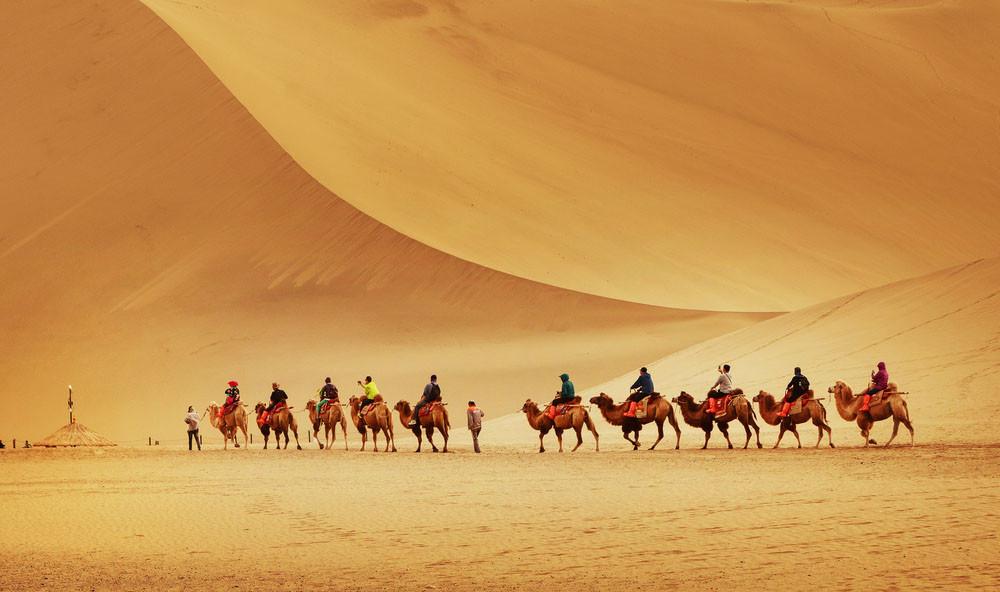 Camel caravan in the Gobi desert, Dunhuang, China.