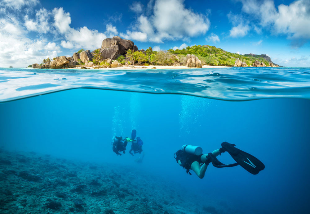 Divers below the surface, Seychelles.