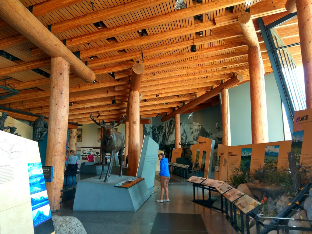 Craig Thomas Discovery and Visitor Center, Moose
