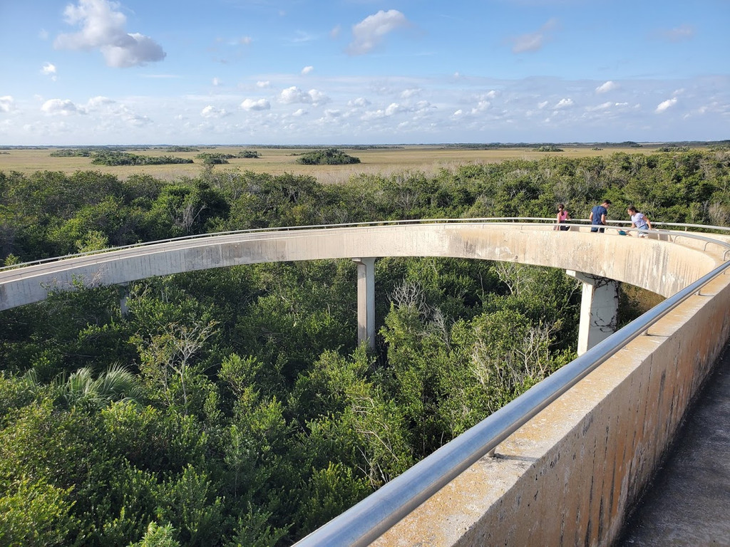 Shark Valley Observation Tower, Miami