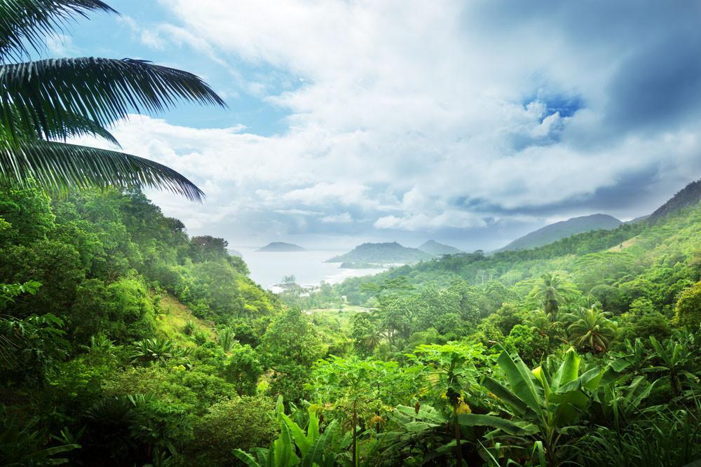 Morne Seychellois National Park, Seychelles.