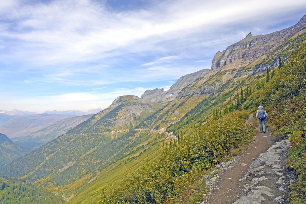 Highline Trail, West Glacier