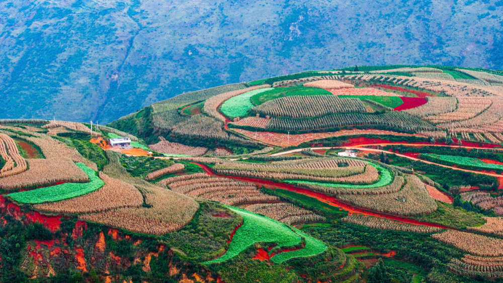 Dongchuan District, China