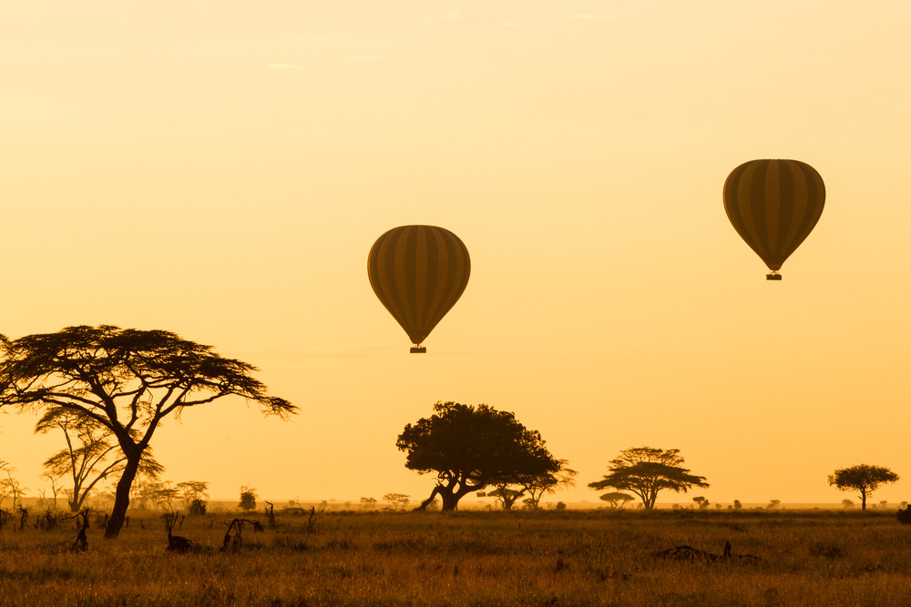 Hot air balloons over the Serengeti, Tanzania.