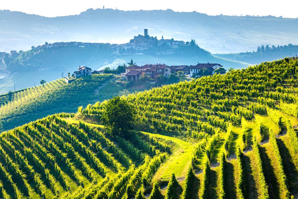 Barolo wine region, Langhe, Piedmont, Italy.